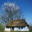Old rural house - Photo