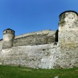 Stock Photo: Old Fortress