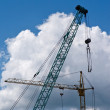 Building cranes — Stock Photo