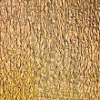 Royalty-Free Stock Photo: Golden background