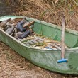 Green hunter's boat in a reed — Stock Photo