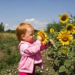 Child and sunflower — Stock Photo #1303654