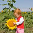 Child and sunflower — Stock Photo #1303706