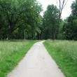Path in the park — Stock Photo