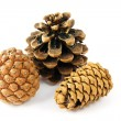 Three fir cones on white — Stock Photo
