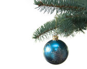 Blue christmas tree ball on fir brach — Stock Photo