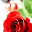 Close-up of rose with heart and wineglas - Stock Photo