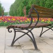 Brown bench near flower bed with tulips - Stock Photo