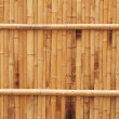 Natural bamboo fence texture — Stock Photo