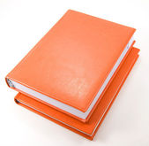 Two orange diaries on white — Stock Photo