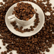 White china cup with roasted coffee bean — Stock Photo