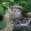 Waterfall in japanese garden — Stock Photo #1240132