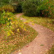 Stock Photo: Meandering path in park