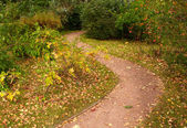 Meandering path in the park — Stock Photo