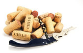 Corkscrew and several wine corks on whit — Stock Photo