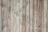 Weathered blue painted wooden fence — Stockfoto