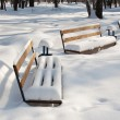 Snow covered benches in the park — Stock Photo