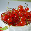 Fresh red currant — Stock Photo #1158302