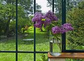 Lilac in vase — Stock Photo