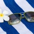 Tropical Flower And Sunglasses - Stok fotoğraf