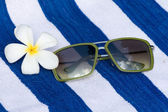 Tropical Flower And Sunglasses — Стоковое фото