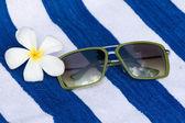 óculos de sol e flores tropicais — Foto Stock