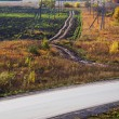 Stockfoto: Different roads