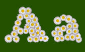 Alphabetical letter made of flowers — Stock Photo