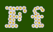 Alphabetical letter made of flowers — Foto de Stock