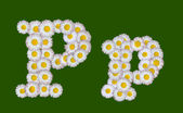 Alphabetical letter made of flowers — Стоковое фото