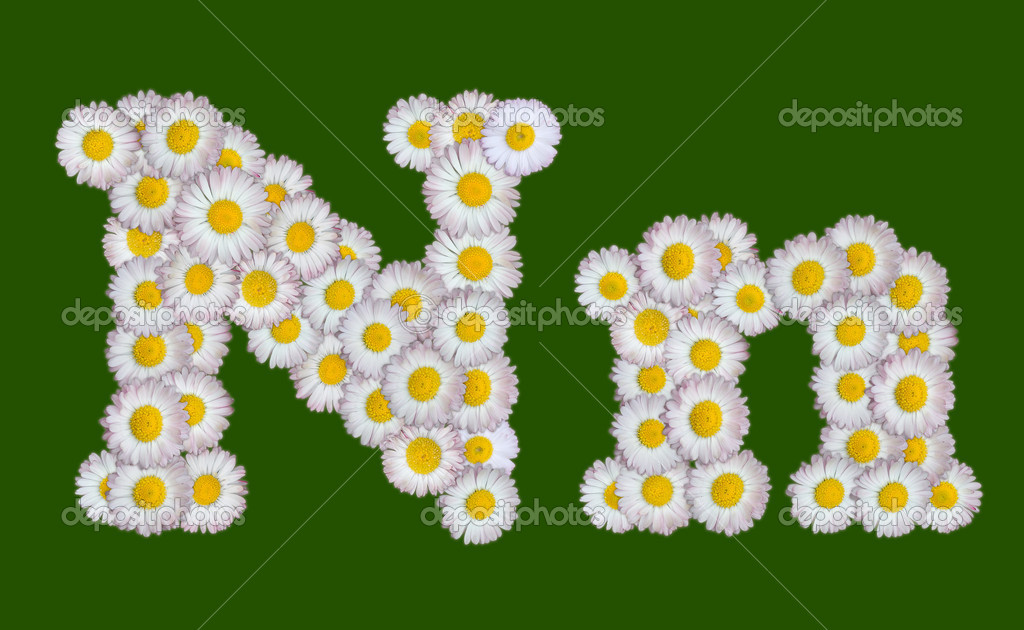 Alphabetical Letter Made Of Flowers Stock Photo Avlntn