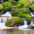 Small waterfalls — Stock Photo