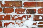 Frozen wall — Stock Photo