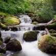 Small waterfall — Stock Photo #1218049