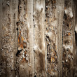 Wooden background — Stock Photo #1927144