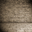 Old interior, brick wall - Foto Stock