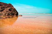 Costa belo oceano — Foto Stock