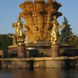 Fountain friendship of nations in Moscow — Foto Stock