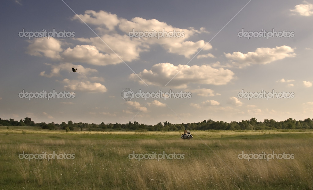 The stork catches up with the motorcyclist on a meadow — Stock Photo #1137082