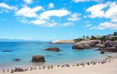 Penguenler kayalar beach. güney afrika — Stok fotoğraf