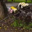 Old cart with flowers — Stock Photo #1393046