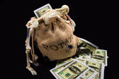 Bag of money — Stock Photo