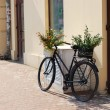 Bicycle with baskets of flowers — Stock Photo #2572850