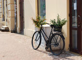 Bicycle with baskets of flowers — Stock Photo