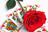 Rose over playing card — Stock Photo