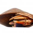 Stock Photo: The hermit crab hiding in a shell of a s