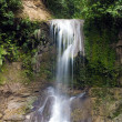 Stock Photo: Waterfall SSebastiin Puerto Rico