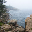 Coast of state of Maine, the USA, Acadia - Stok fotoraf