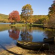 Stock Photo: Autumn in Virginia