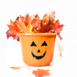 Bucket for Halloween with leaves - Zdjęcie stockowe